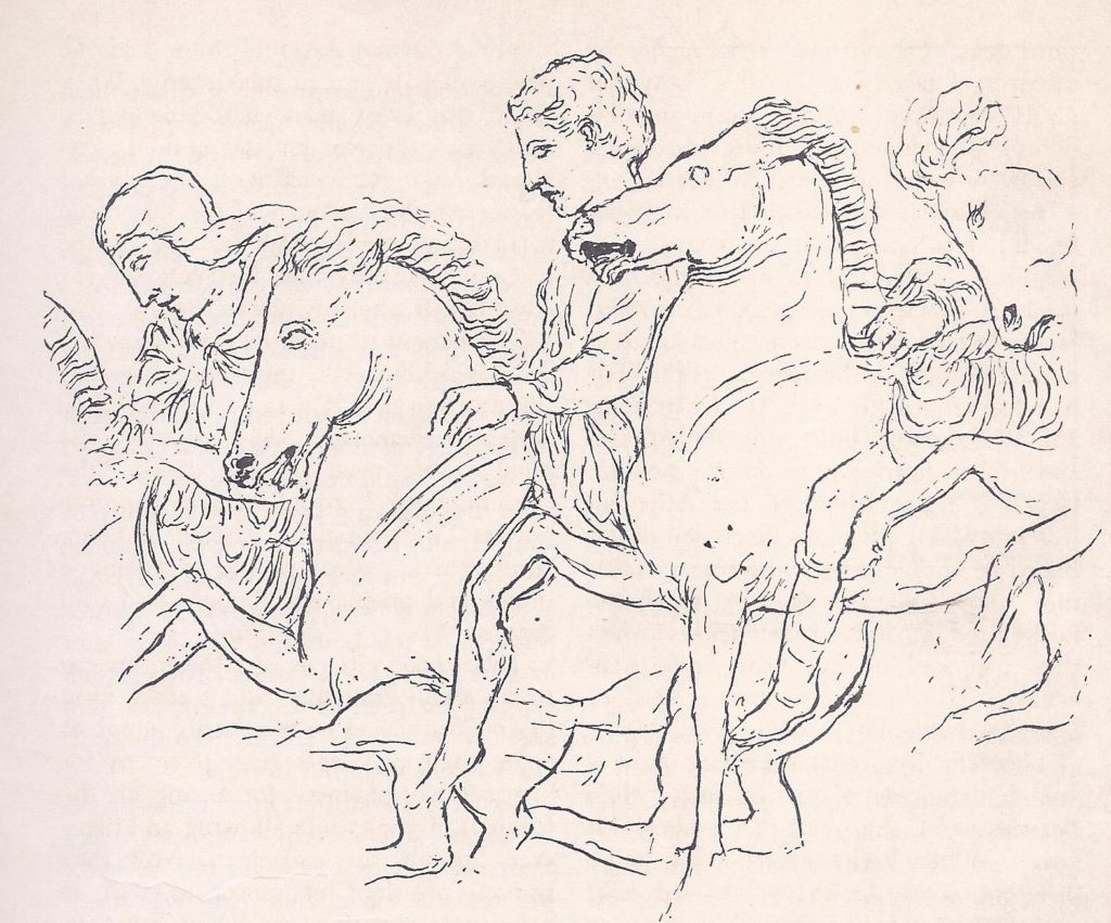 Young men riding in the Panathenaic procession, as shown on the Elgin marbles. They were army recruits, who wore their hair short. Greeks rode without stirrups.
