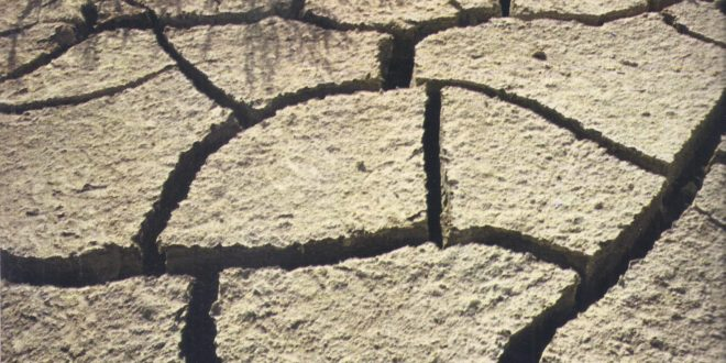 The parched desert lands of the Middle East recall the grim terrain crossed by the Israelites under Moses in the Exodus from Egypt. (The picture shows the cracked soil and sparse vegetation of the Negev, near the Dead Sea.)