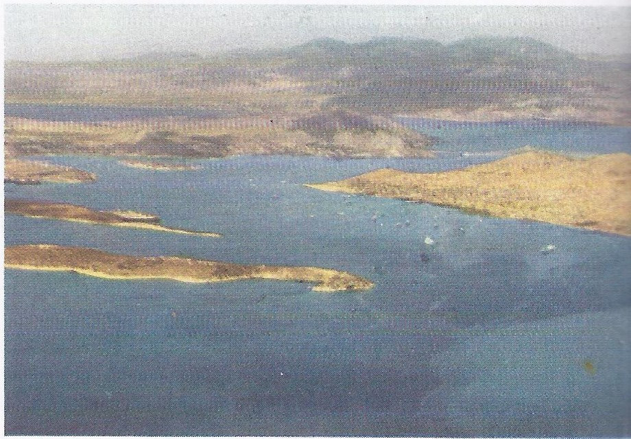Aerial view of Salamis. Part of the island can be seen to the left (beyond the island of Psyttaleia).
